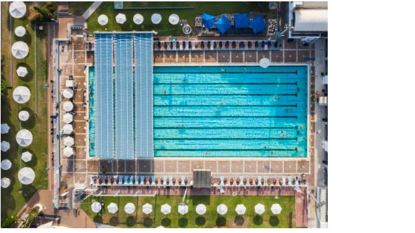 מהו סוג השחייה המומלץ ביותר?